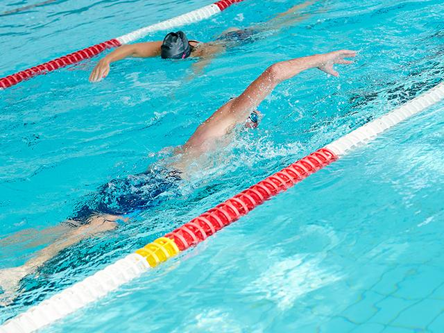 cours natation adultes
